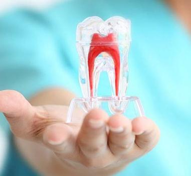 Endodontics Dr Orphanos